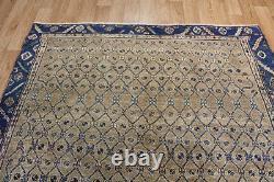 Antique Persian Malayer Rug Handmade Rug Oriental Carpet 10 X 5'2 Ft