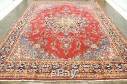 Persian Traditional Vintage Wool 9.6 X 12.9 Oriental Rug Handmade Carpet Rugs