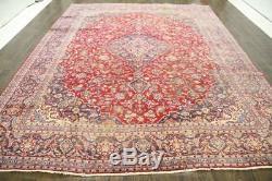 Traditional Vintage Persian Wool 9.5 X 12.6 Oriental Rug Handmade Carpet Rugs