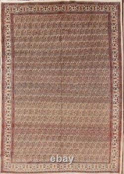 Vintage PAISLEY Traditional Mood Oriental Area Rug WARM COLOR Hand-made 8x11